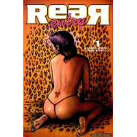 Erotic Comic - various Artists - Rear Entry 01